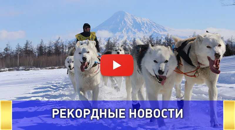 Самая протяженная гонка на собачьих упряжках