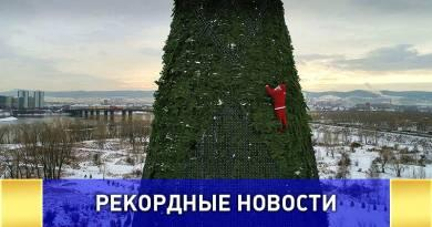 Самая высокая ёлка в России